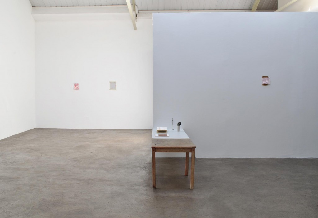2_Fergus-Feehily_disappearance_Installation-view_copyright-the-artist-and-mothers-tankstation