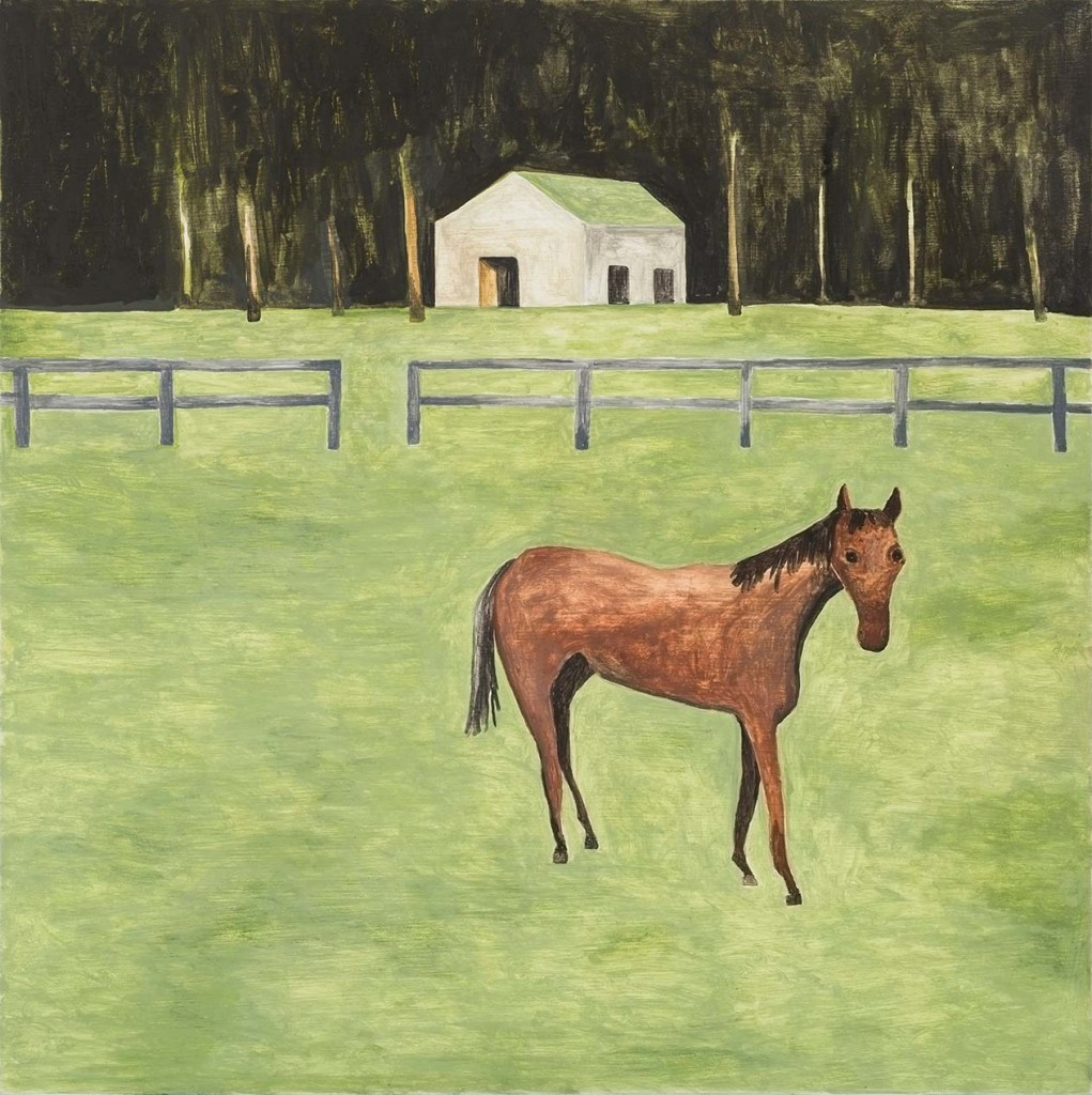 NMK-010-14-Horse-on-Rural-Property_hr