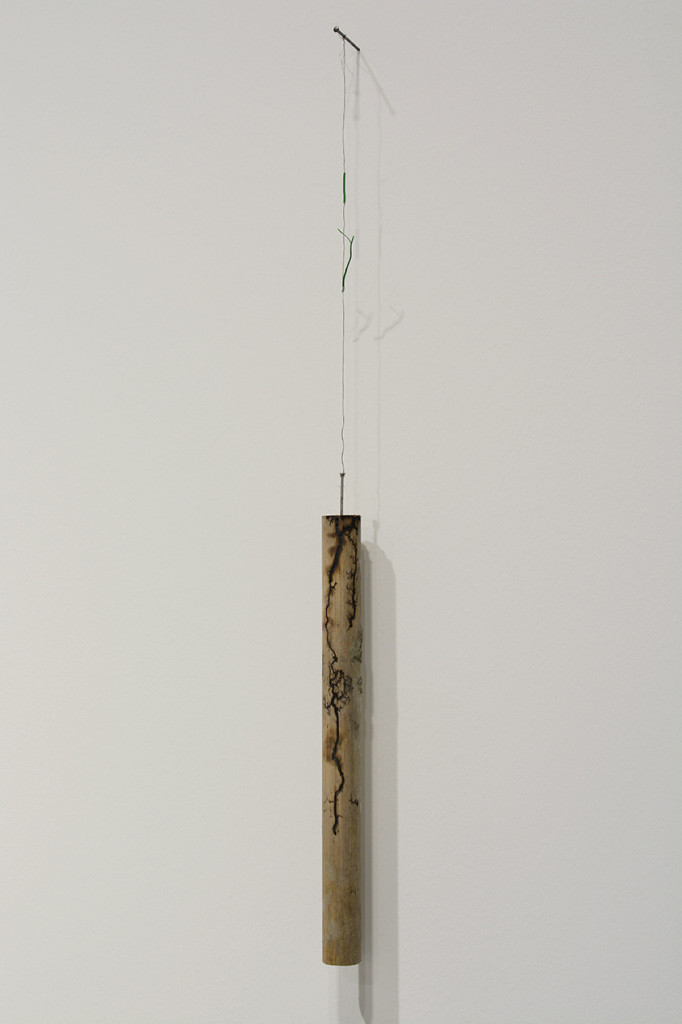 Nina-Canell_Halfway-Between-Opposite-Ends_3000-volt,-wood,-salt,-water_27-x-2-x-2-cm_2016_2_hr