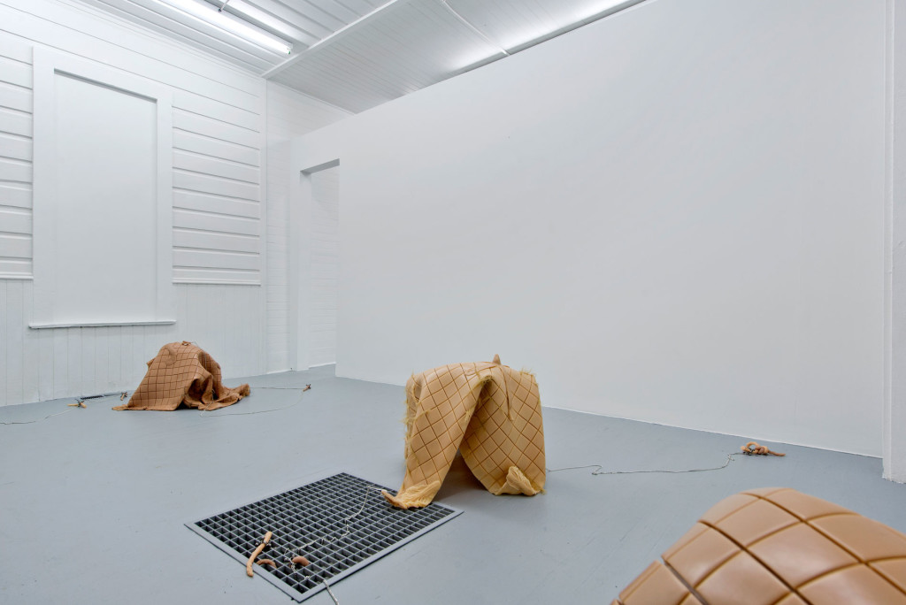 9.Hannah Levy_Gourmet Garden_Installation View_Copyright the artist and mother's tankstation limited
