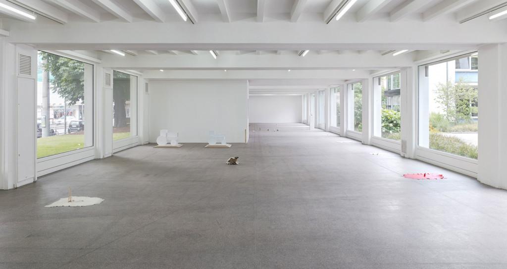 2.-Sam-Anderson_Big-Bird_Kölnischer-Kunstverein_Installation-view_Copyright-the-artist-and-mother's-tankstation-Dublin_London