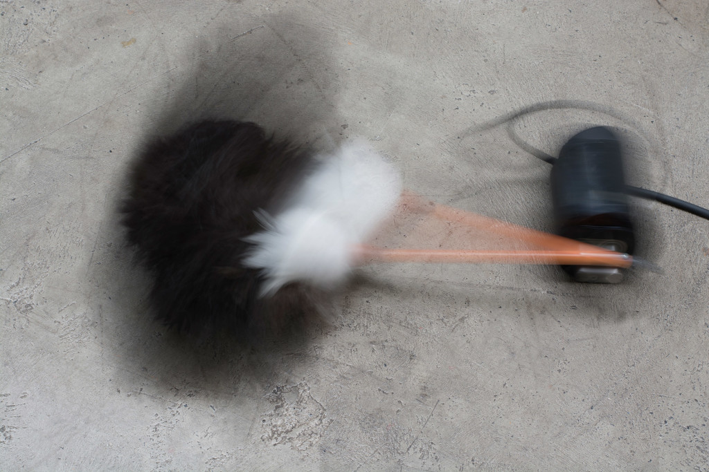 4.-Yuko-Mohri_painfully_2019_detail_moving-feather-duster_slower-than-slowly_Copyright-the-artist-and-mother's-tankstation-limitedn
