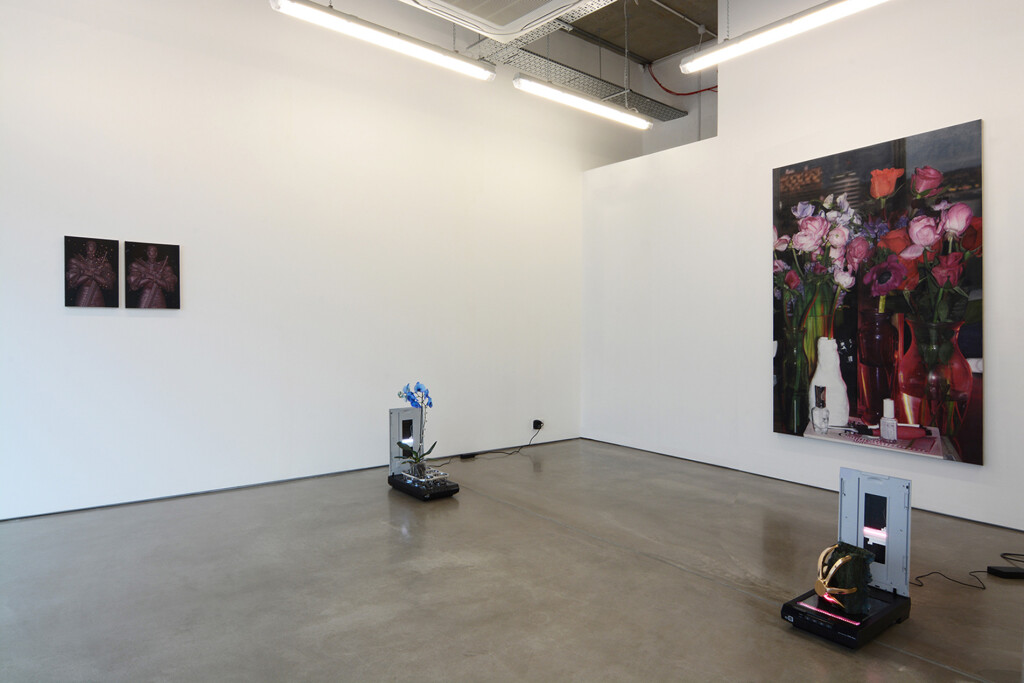 10a.-Parker-Ito_PPP_Installation-view_Copyright-the-artist-and-mother's-tankstation-limited