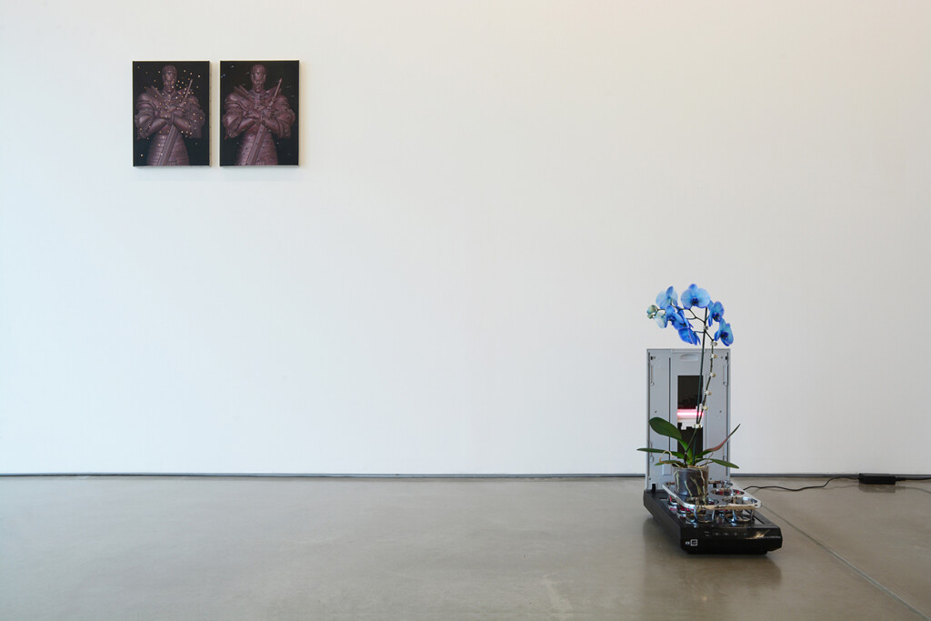 1a.-Parker-Ito_PPP_Installation-view_Copyright-the-artist-and-mother's-tankstation-limited